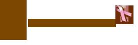 msbrafit_logo